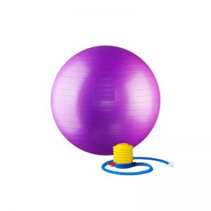 Exercise Gym Ball with Foot Pump
